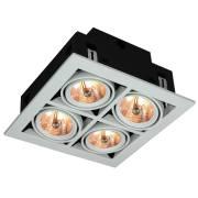 Точечный светильник CARDANI Arte Lamp A5930PL-4WH
